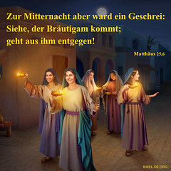Matthaeus-256 (sscysz1314) Tags: gottvoiceofgod beurteilung heiligergeist glauben retter