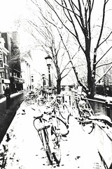 Bike country (RW-V) Tags: canoneos70d canonefs1018mmf4556isstm oudegracht utrecht bicyclettes bicycles fahrräder fietsen cyclist cycliste rider pédaleur fietser radfahrer nb bw sw zw noiretblanc monochrome neige schnee snow sneeuw 100faves 150faves 175faves 200faves 225faves 250faves contraste contrast psp 275faves 300faves 325faves 3500views 350faves 4500views 375faves 5000views 400faves 6000views 425faves 7500views 450faves
