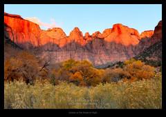 Sunrise on the Tower of Virgin (http://weekendtravelersblog.blogspot.com/) Tags: utah fallcolor unitedstates fallfoliage zionnationalpark springdale us