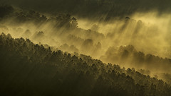 Val do Ulla (Noel F.) Tags: galicia galiza sony a7r a7rii ii fe 100400 gm val do ulla neboa fog sunrays raiolas