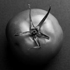you say tomato, I say tomatoe (MyArtistSoul) Tags: tomato macro closeup bw zw veggie food fruit square 1413 macromondayscentersquarebw