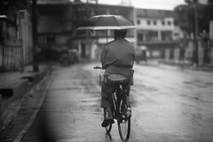 The Moulana Leads The Way Again (N A Y E E M) Tags: moulana bicycle umbrella afternoon atmosphere street navalavenue chittagong bangladesh windshield