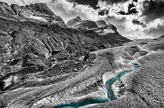 Athabasca Glacier (Sean X. Liu) Tags: athabasca glacier columbiaicefield alberta canada canadianrockies rockymountains monochrome blackandwhite selectivecolor travel