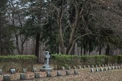 TheFullnessOfHerConsecration (jmishefske) Tags: 2018 december d850 nikon graveyard woods nun 19thcentury graves seminary cemetery stfrancis wisconsin