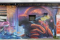 Skr3am Thornbury 2018-11-03 (5D_32A5927) (ajhaysom) Tags: skr3am thornbury melbourne australia streetart graffiti canoneos5dmkiii canon1635l