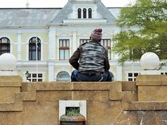 Victoria Gardens - Cape Town - [SOUTH AFRICA] (Vagabundler) Tags: streetart capetown southafrica woodstock graffiti graffitiart elephant streetartcapetown elephantart art🎨 travelphotography📷 urbanart dailygraffiti instagraffiti streetartiseverywhere vagabundler coloronthewalls spraycanart streetphotography streetartistry murales travelgram wallart travel travelblogger instagraff urbanwalls graffitiwall globalstreetart grafflife