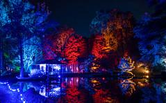 Maymont (zachclarke) Tags: maymont gardenglow japanesegarden garden botanicgardens rva richmond richmondva night light lights 2018 november nikon nikond5600 d5600 zachclarke2 zachclarke