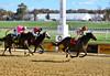 "2018-11-03 (18) r5 Rosario Montanez on #7 Huyana (JLeeFleenor) Tags: photos photography md marylandracing maryland marylandhorseracing laurelpark outside outdoors jockey جُوكِي ""赛马骑师"" jinete ""競馬騎手"" dżokej jocheu คนขี่ม้าแข่ง jóquei žokej kilparatsastaja rennreiter fantino ""경마 기수"" жокей jokey người horses thoroughbreds equine equestrian cheval cavalo cavallo cavall caballo pferd paard perd hevonen hest hestur cal kon konj beygir capall ceffyl cuddy yarraman faras alogo soos kuda uma pfeerd koin حصان кон 马 häst άλογο סוס घोड़ा 馬 koń лошадь"