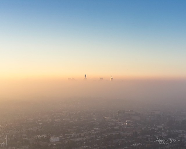 Foggy morning in L.A.