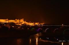 Carcassonne (réj@ubert) Tags: carcassonne