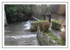 petit barrage (Christ.Forest) Tags: pont barrage eau riviére pierre arbre metal broglie normandi normandy 14 nature village lovenormandie