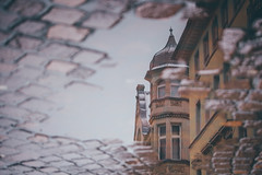Heidelberg Reflections (freyavev) Tags: heidelberg reflection reflections pond water cobblestone urban urbandetails deutschland germany badenwürttemberg street architecture canon canon700d telelens zoomlens mikasniftyfifty vsco outdoor