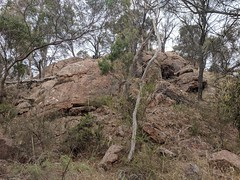 Christmas Rocks (koukat) Tags: road trip viaje travel south australia sa coonawarra wine region drive driving wineries bodegas cata vino tasting penola limestone coast