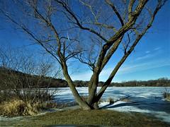 Lily Lake in Winter (pirate johnny) Tags: stillwater minnesota lilylake january winter ice lake