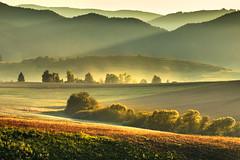 ... (kasinco) Tags: slovakia sunset shadow landscape light fog fields trees pentax