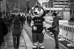 Mascot for cross country skiing (Rambofoto) Tags: blackwhite street monochrom dresden sachsen personen human nikond40