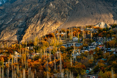The Most Beautiful Village In Pakistan II Hunza Pakistan (CK NG (choookia)) Tags: themostbeautifulvillageinpakistan hunza pakistan autumn mountain tree traveller travel village nagar sonya7rii sonyfe24240mm