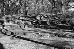 Outdoor Classroom (Gene Ellison) Tags: hill hillside rocks blocks stone amphitheater seating woods setting blackwhitephotos bw