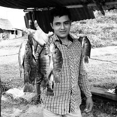 Mojarras (Marcos Núñez Núñez) Tags: streetphotography pescado fish ojo pescadería blackandwhite blancoynegro pescadito oaxaca chinantla mx presa bw iphone iphone5s streetphotographer mojarra