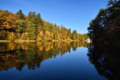Jeu de reflets sur l'étang de Hasselfurth (Excalibur67) Tags: nikon d750 sigma globalvision art 24105f4dgoshsma paysage landscape reflexion reflets arbres trees forest foréts automne autumn nature eaux étangs
