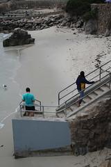 IMG_10938 (mudsharkalex) Tags: california pacificgrove pacificgroveca loverspointpark loverspointbeach beach