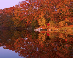 Autumn's Reflection (joegeraci364) Tags: autumn fall season coast shore nature reflection landscape tree dock scenic serene calm color red orange mystic connecticut newengland vacation travel