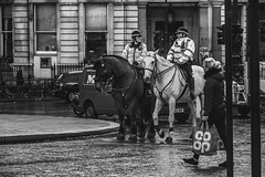 Police on horseback in London (baridue) Tags: police horseback london trafalgarsquare square streetphoto streetphotography street streetrome england regnounito