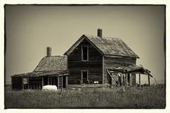 ... near Minot. (Meth Swanson) Tags: oldhouse rural country northdakota ruins