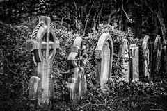 """Remembered no more"" (Pensioner Percy) Tags: carlisle wetheral holytrinitychurch d750 nikon nikonafsnikkor85mmf18g bw d750nikon niksilverefex vignetting pensionerpercy 850mmf18 primelens nikonprimelenses graveyard burialsites"