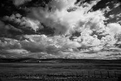 Can't keep my eyes from the circling sky (.KiLTRo.) Tags: kiltro cl chile paisaje landscape cielo sky clouds nubes patagonia magallanes tierradelfuego elitegalleryaoi bestcapturesaoi