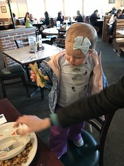 "Dani Eats Mommy's Sandwich at Egg Harbor • <a style=""font-size:0.8em;"" href=""http://www.flickr.com/photos/109120354@N07/46879729632/"" target=""_blank"">View on Flickr</a>"