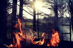 Campfire (Jarl-Erik Storesund) Tags: fire campfire nature light norway norge contrast shadow sun sunset sveio mood