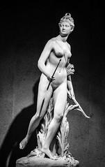 Diana by Jean-Antoine Houdon (Fernando Two Two) Tags: diana houdon gulbenkian museu museo lisbon lisboa artemis godess diosa myth greek mito calouste sculpture escultura art arte settecento xviii 1780 french rococo baroque barroco barocco