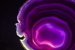 Magenta Agate (adamopal) Tags: canon canon7d canon7dmarkii canon7dmkii magentaagate slicedagate sliced agate cutup mineral backlit lightingexperiment macro macro100mm 100mm translucent shiney black white magenta purple grey tan