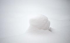 Munich - Flowerpot (cnmark) Tags: germany munich deutschland münchen bayern bavaria amhart schnee snow flowerpot blumentopf plant pot white whiteout highkey ©allrightsreserved