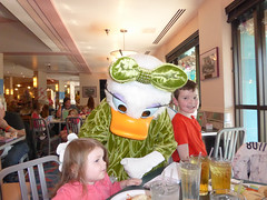 Florida Day 4 - 080 Disneys Hollywood Studios Minnies Holiday Dine at Hollywood and Vine Daisy Duck (TravelShorts) Tags: wdw walt disney world disneys hollywood studios florida orlando fantasmic frozen vine star wars tower terror