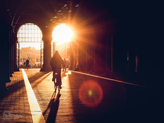 Under the Rijksmuseum (Nezgsy) Tags: amsterdam2018 holland rijksmuseum bike street sunflare