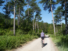 Tim, Foret Domaniale de Rialsesse (Niall Corbet) Tags: france occitanie languedoc roussillon aude foretdomaniale rialsesse cycling cycle