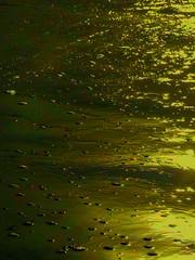 Peculiar Bubbles (Steve Taylor (Photography)) Tags: bubbles tide digitalart green gold yellow newzealand nz southisland canterbury christchurch beach ocean pacific sea seaside waves autumn sunny sunshine