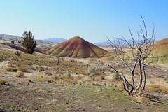 Perspective - Painted Hills, Oregon (Eclectic Jack) Tags: eastern oregon trip october 2018 rural autumn fall mountains painted hills hill central telephoto blue red rock