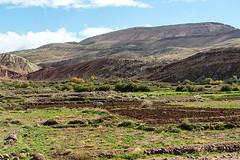 20181114-253 (sulamith.sallmann) Tags: arbeit landschaft afrika atlas atlasgebirge berge gebirge landwirtschaft marokko mountains pflügen sulamithsallmann