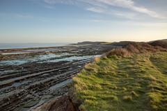 _19A4802 (stuleeds) Tags: coast kilkebeach kilvebeach leefilter somerset sunrise