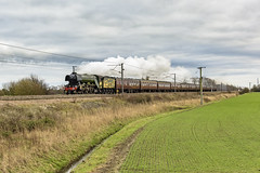 McAlpine Salute (4486Merlin) Tags: 60103 ecml england europe exlner farmland flyingscotsman lnerclassa3 landscape northyorkshire railways steam transport unitedkingdom eggborough gbr burn dbc ukrt scotsmansalute he