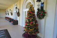 Key West Trip, December 1 to 11, 2018 1621Ri 4x6 (edgarandron - Busy!) Tags: casamarina keywest