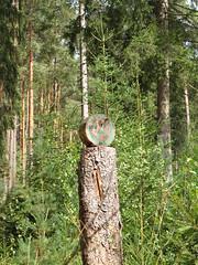 Holzkunst! (elisabeth.mcghee) Tags: vogelfreistätte groser rusweiher naturschutzgebiet preservation eschenbach oberpfalz upperpalatinate holzkunst art wald forest bäume trees