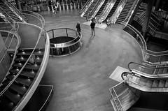 """Stepping Stones"" (Photography by Sharon Farrell) Tags: fultonstreet fultoncenter fultontransitcenter fultintrainstation fultontransportationhub fultonsubwaystation fultonstation fultonstreetsubwaystation lowermanhattan blackandwhite blackwhite noiretblanc steps escalators stepsandstairs stepsandstepsandsteps stairs stairporn staircases stairscapes stairwell"