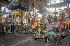 preparing (kuuan) Tags: manualfocus mf voigtländer15mm cvf4515mm 15mm bali indonesia sonynex5n festival temple preparations offerings ladies kebaya