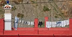 La ropa limpia en Archez - the clean laundry - de schone was (Stil Licht) Tags: streetphotography spanje spain sierratejeda sierraalmijara espagna axarquia archez