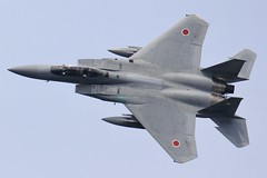 Maneuver Flight Display / JASDF 305sq F-15DJ 82-8065 (Martin Tack) Tags: f15 f15j eagle