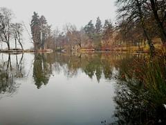 Winter, autumn? (Baubec Izzet) Tags: baubecizzet autumn water lake landscape trees reflections